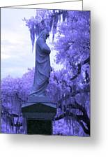 Ziba King Memorial Statue Side View Florida Usa Near Infrared Greeting Card