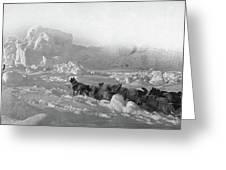 Ziegler Polar Expedition Greeting Card