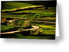 Zigzags Of A Path Greeting Card