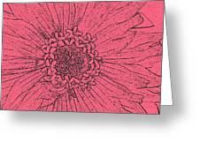 Zinnia In Pencil  Greeting Card