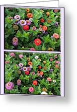 Zinnias 4 Panel Vertical Composite Greeting Card