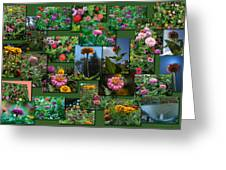 Zinnias Collage Rectangle Greeting Card