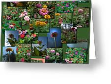Zinnias Collage Square Greeting Card