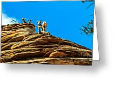 Zion Bighorn Sheep Greeting Card