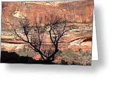 Zion Canyon Tree #1 Greeting Card