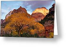 Zion Cliffs Autumn Greeting Card