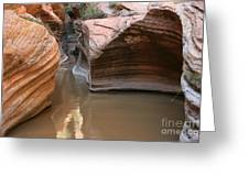 Zion Puddle Greeting Card