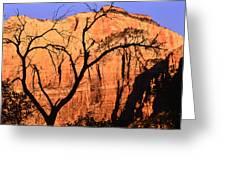 Zion Tree Greeting Card