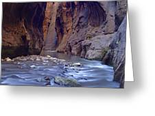 Zions 015 Greeting Card
