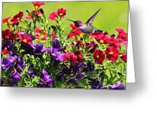 Zipping Through The Garden Greeting Card