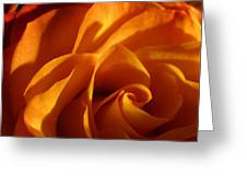 Zowie Rose Greeting Card