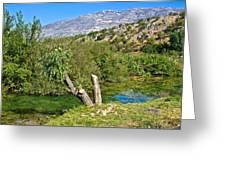 Zrmanja River And Velebit Mountain Greeting Card