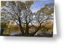 A Day Of October Greeting Card