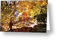 Autumn High Greeting Card