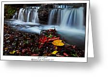 Autumnal Falls Greeting Card