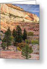 East Zion Canyon Hdr Greeting Card