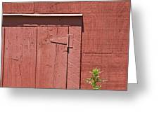 Faded Red Wood Barn Wall Greeting Card