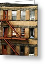 Fire Escapes - Nyc Greeting Card