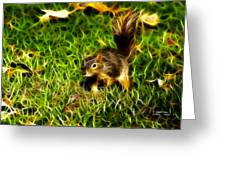 - Fractal - Pointer - Robbie The Squirrel Greeting Card