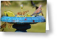 Laughing Dove And Flower Greeting Card