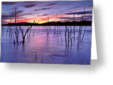 Purple Lake  Greeting Card