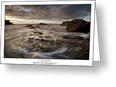 Rocky - At Trearddur Bay Greeting Card