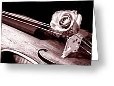 Rose Violin Viola Greeting Card