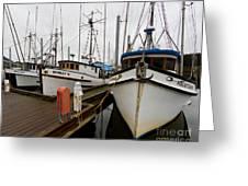 Salmon Trollers Greeting Card