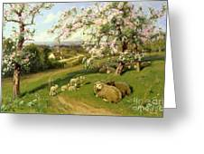 Spring - One Of A Set Of The Four Seasons  Greeting Card