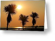 Summers Evening Greeting Card