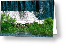 The Bottom Falls Greeting Card