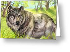 Wolf Summer Greeting Card