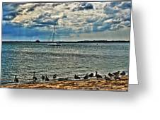 001 On A Summers Day  Erie Basin Marina Summer Series Greeting Card