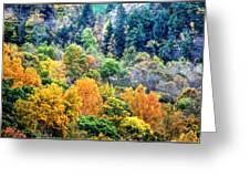 0026 Letchworth State Park Series   Greeting Card