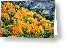 0027 Letchworth State Park Series   Greeting Card