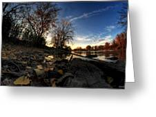 008 Autumn At Tifft Nature Preserve Series  Greeting Card