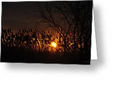 06 Sunset Greeting Card