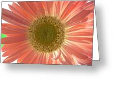 0626a1 Greeting Card