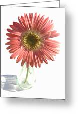 0653a1-2 Greeting Card