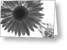 0684a4 Greeting Card
