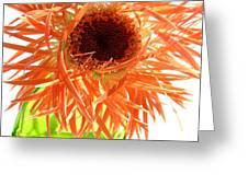 0692c-009 Greeting Card