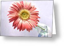0702c1 Greeting Card