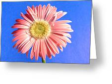0711c2-001 Greeting Card