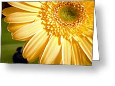 0741.2 Greeting Card