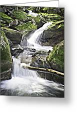 0804-0035 Cascade Above Triple Falls Greeting Card by Randy Forrester