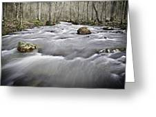 0804-0122 Rolling Creek Of The Ozark Mountains Greeting Card