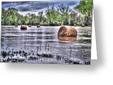 0804-3586 Flooded Hay Greeting Card by Randy Forrester