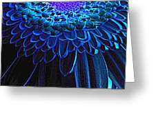 0814a3-004 Greeting Card