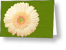 0841a1 Greeting Card