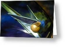 1947 Lincoln Continental Hood Ornament Greeting Card